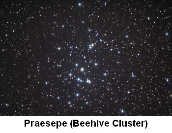Beehive Cluster NASA picture