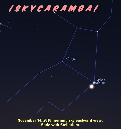 Venus next to Spica the morning of November 14, 2018